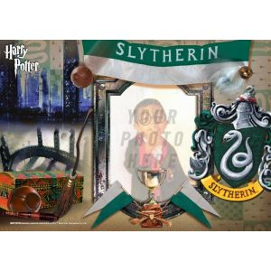 Harry Potter Slytherin House MightyPrint Wall Art. Personalize with your favorite wizard, witch or muggle by uploading a photo!